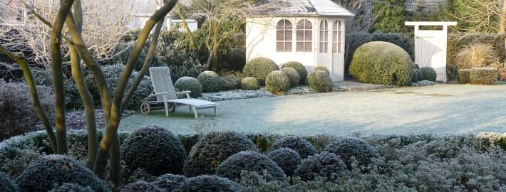 Garten--Winter