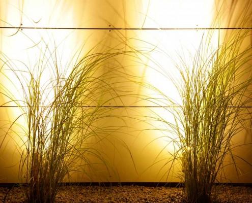 Garten-Licht-Atmosphaere
