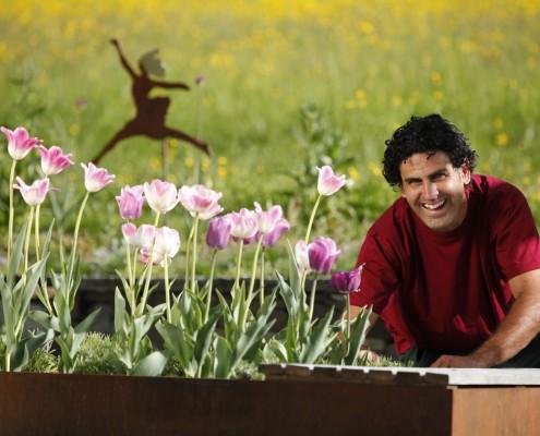 Gartenpflege vom Spezialisten