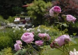 Geniesser-Gartengestaltung