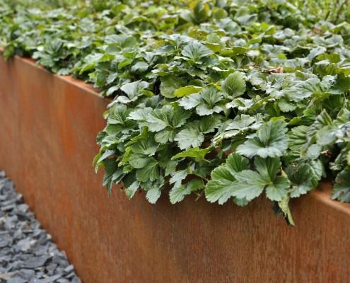 Metall-Hochbeet-Gartengestaltung