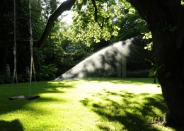 Rasen-Pflege