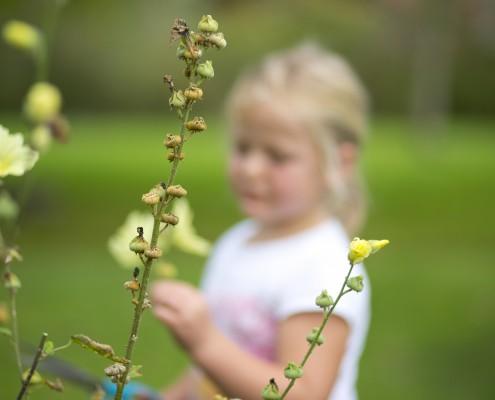 Kind-im-Garten